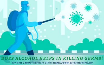 Does Alcohol Helps in Killing Germs