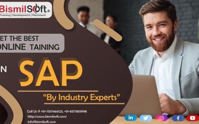 SAP SuccessFactor online training in Noida