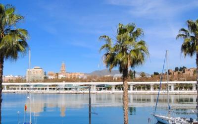 Early bird offer TEFL in Spain